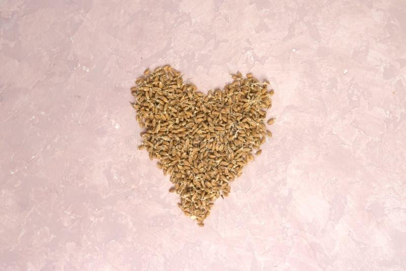 Ontsproten tarwe in vorm van hart op een lichte achtergrond gestemd stock foto