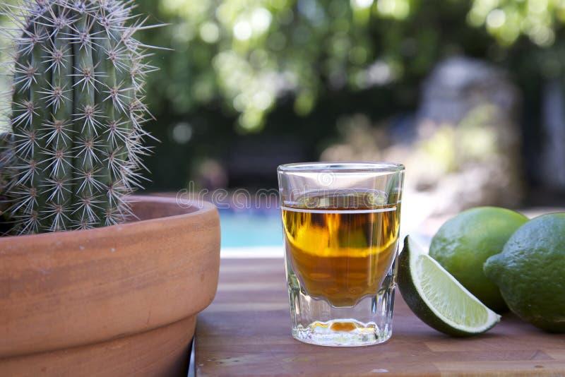 Ontsproten van tequila met kalk royalty-vrije stock foto's