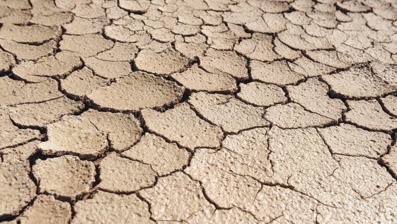 Ontvolking, klimaatverandering, droge en gebarsten aarde stock afbeelding