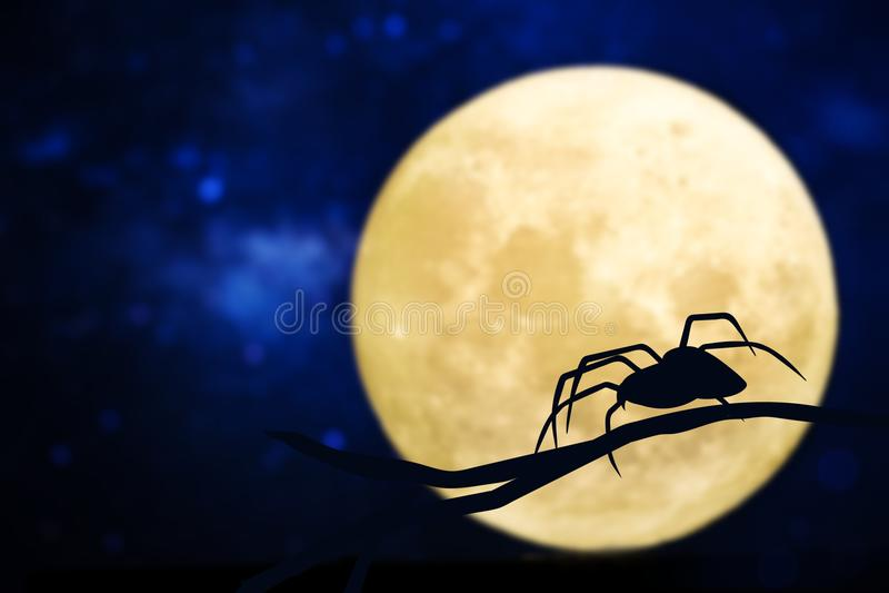 Ontwerp van een spin tegen de maan stock foto's