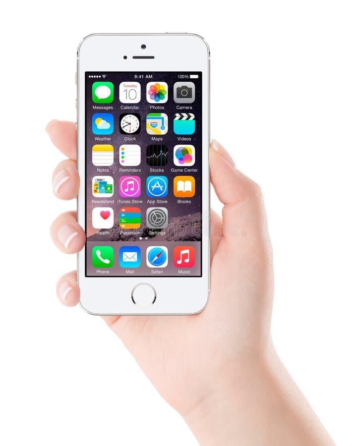 Ontwierp Zilveren iPhone van Apple 5S die iOS 8 in vrouwelijke hand tonen, stock fotografie