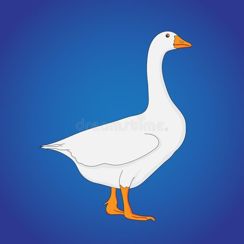 Ontzagwekkend Wit Duck Vector-beeld stock illustratie