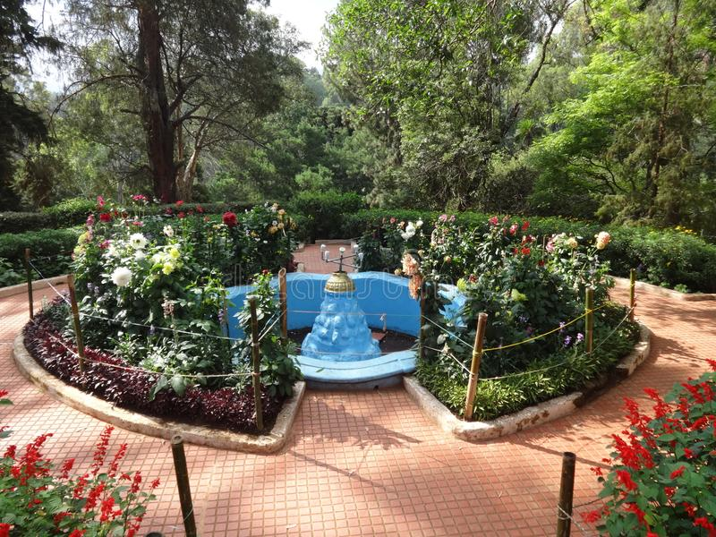 Ontzagwekkende ooty menings botanische tuin, India stock afbeelding