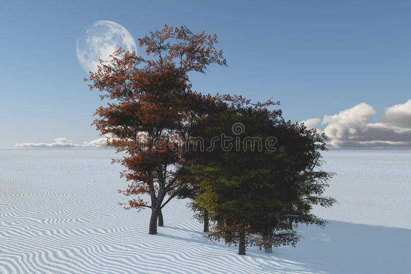 Onverklaarbare bomen in woestijn stock illustratie
