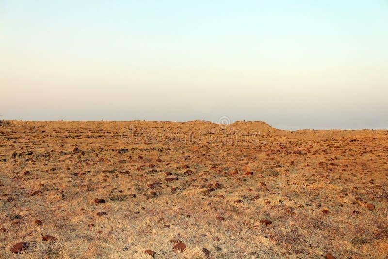 Onvruchtbaar Land stock foto's