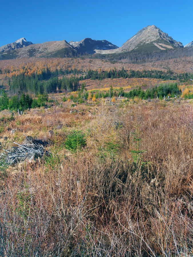 Onweer beschadigd landschap in Hoge Tatras royalty-vrije stock foto