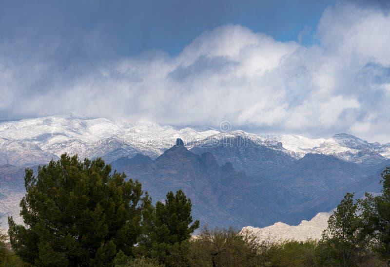 Onweer door Saguaro National Park Tucson stock foto's