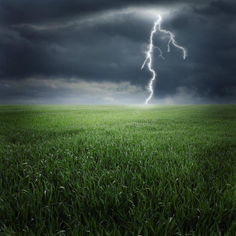 Onweer op gebied II royalty-vrije stock afbeeldingen