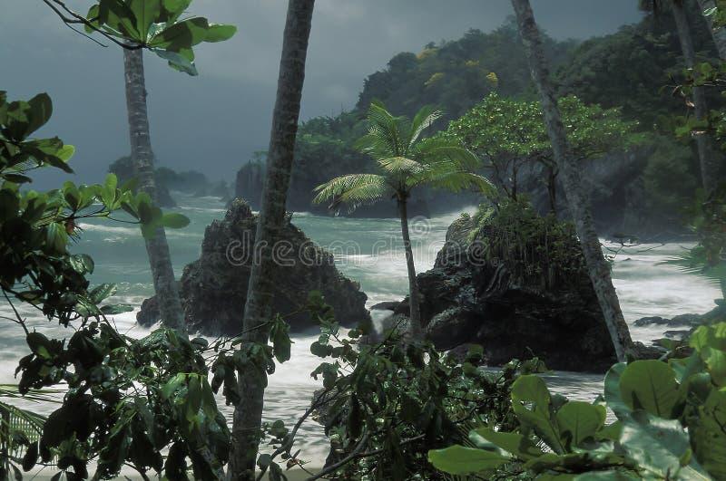Onweer op tropische kust, Trinidad stock foto