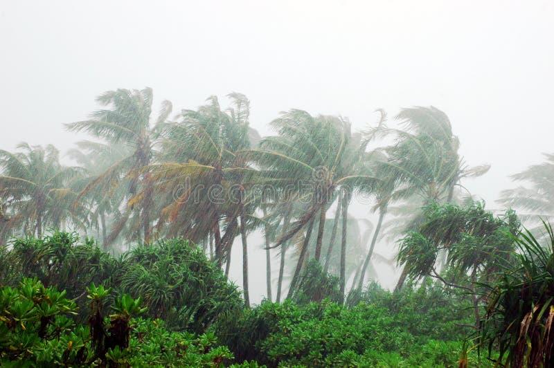 Onweer in tropisch eiland royalty-vrije stock afbeeldingen