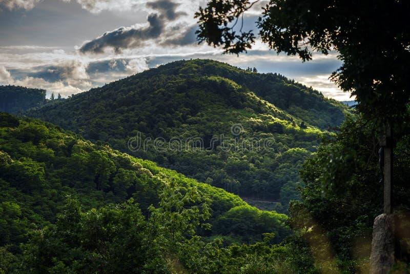 Onweersbui over de bergen en het bos stock foto