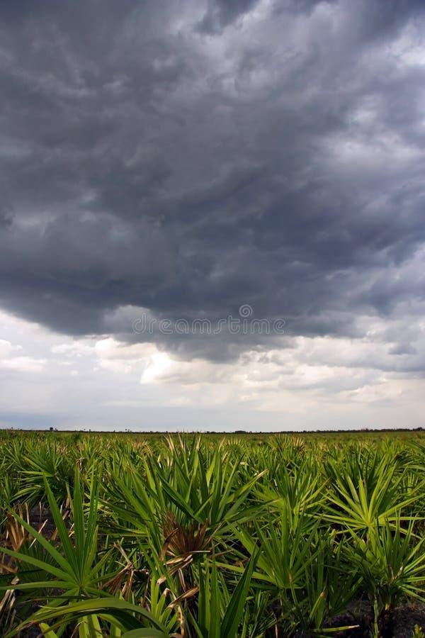 Onweerswolken over de Prairie stock foto's