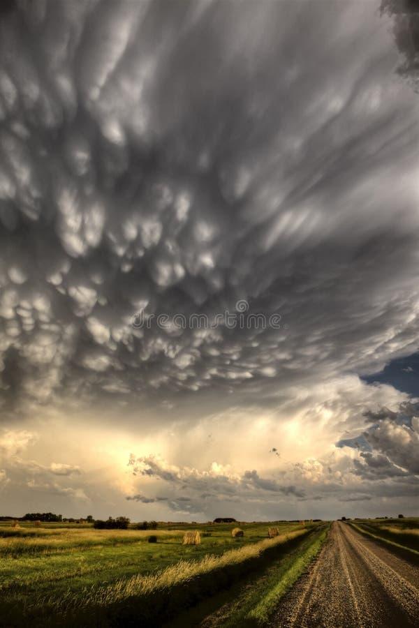 Onweerswolken Saskatchewan stock fotografie