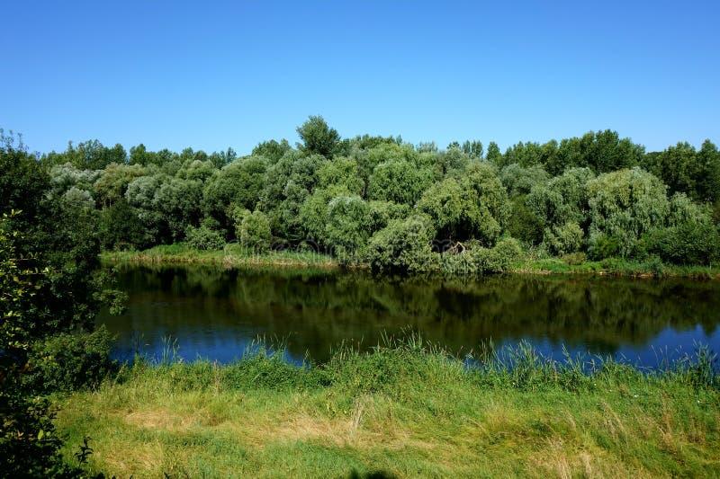 Onyar河的夏天风景在希罗纳 库存照片