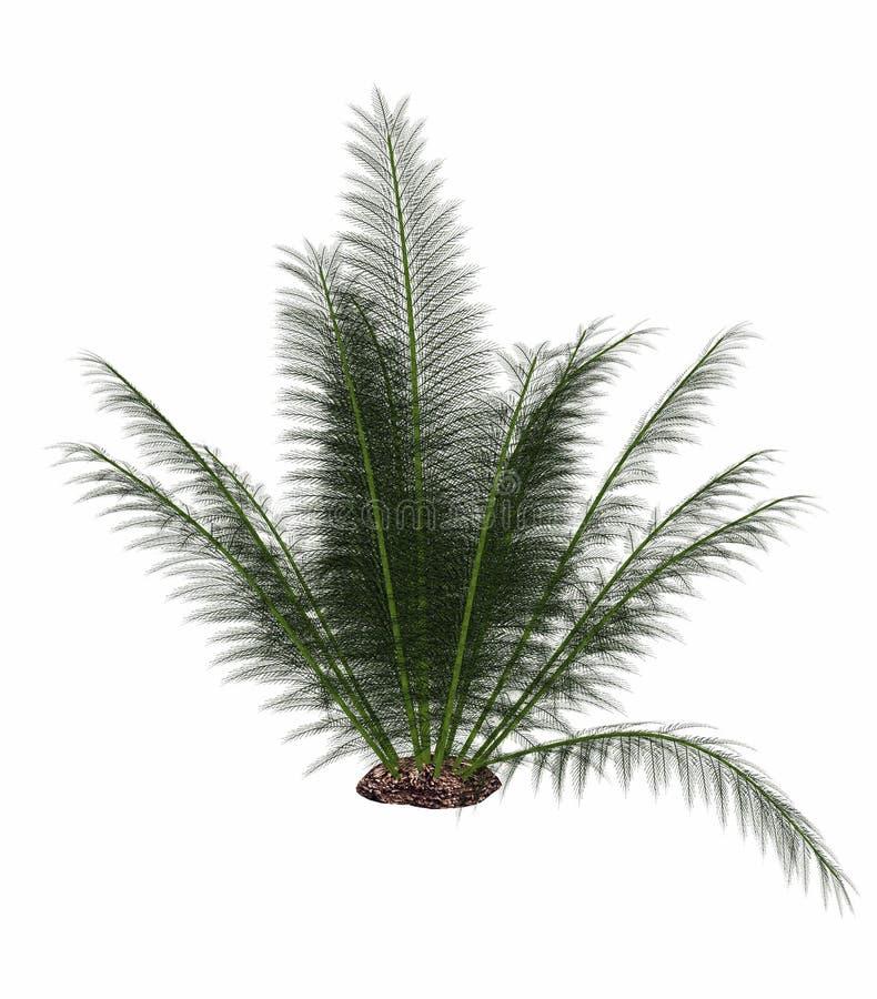 Onychiopsis史前蕨- 3D回报 皇族释放例证