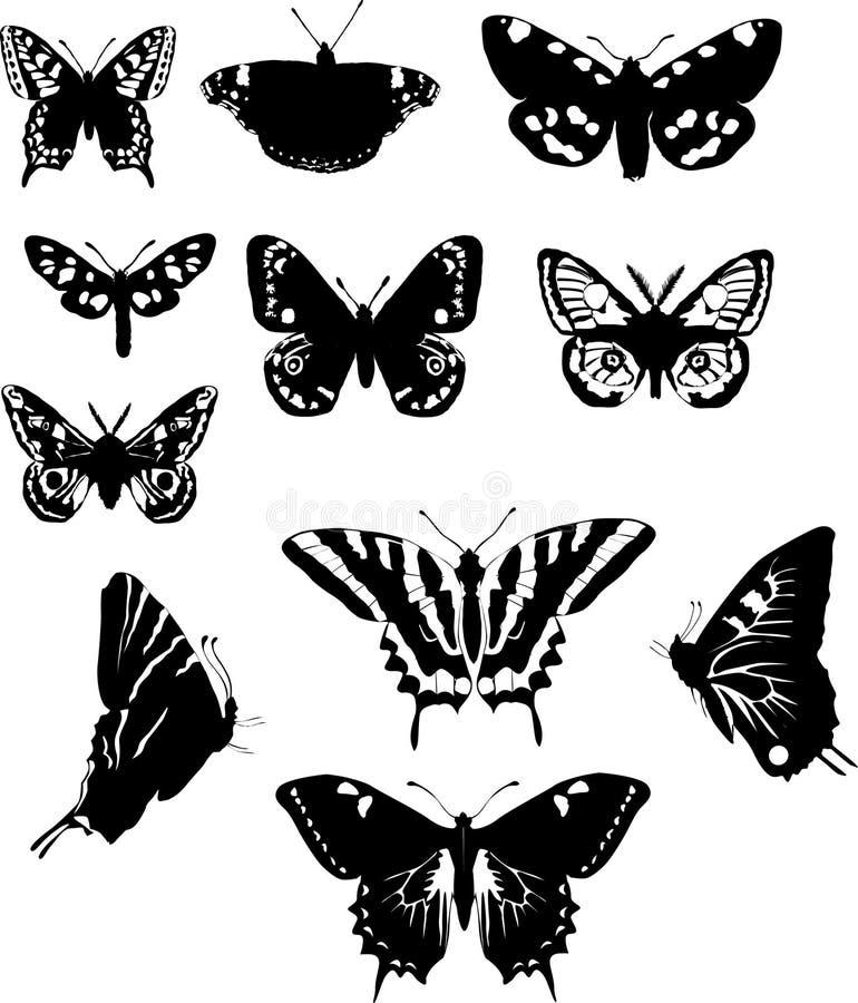 Onze borboletas preto e branco ilustração do vetor