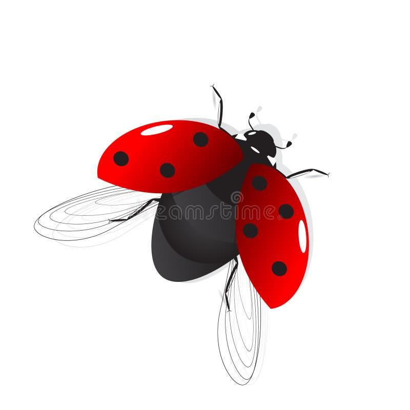 onzelieveheersbeestje vector illustratie