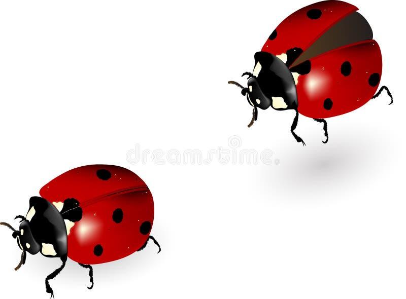 Onzelieveheersbeestje in motie stock illustratie