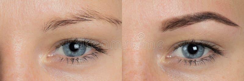 Oog - brows voordien na correctie stock fotografie
