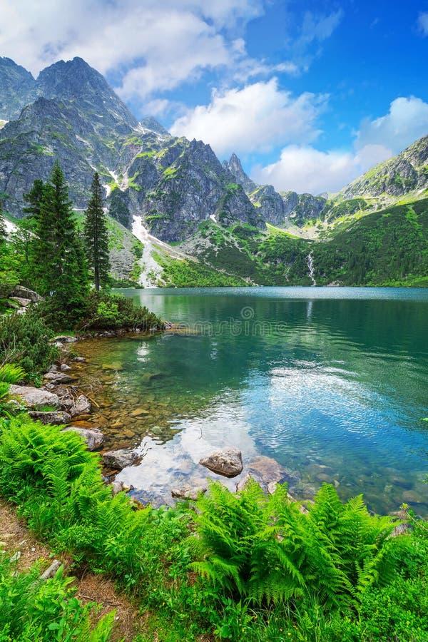 Oog van het Overzeese meer in Tatra-bergen stock foto