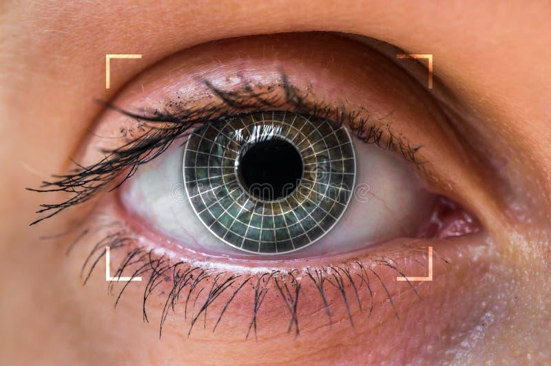 Oogaftasten en erkenning - biometrisch identificatieconcept royalty-vrije stock afbeelding