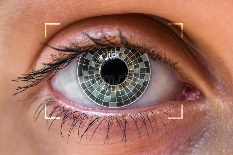 Oogaftasten en erkenning - biometrisch identificatieconcept stock foto