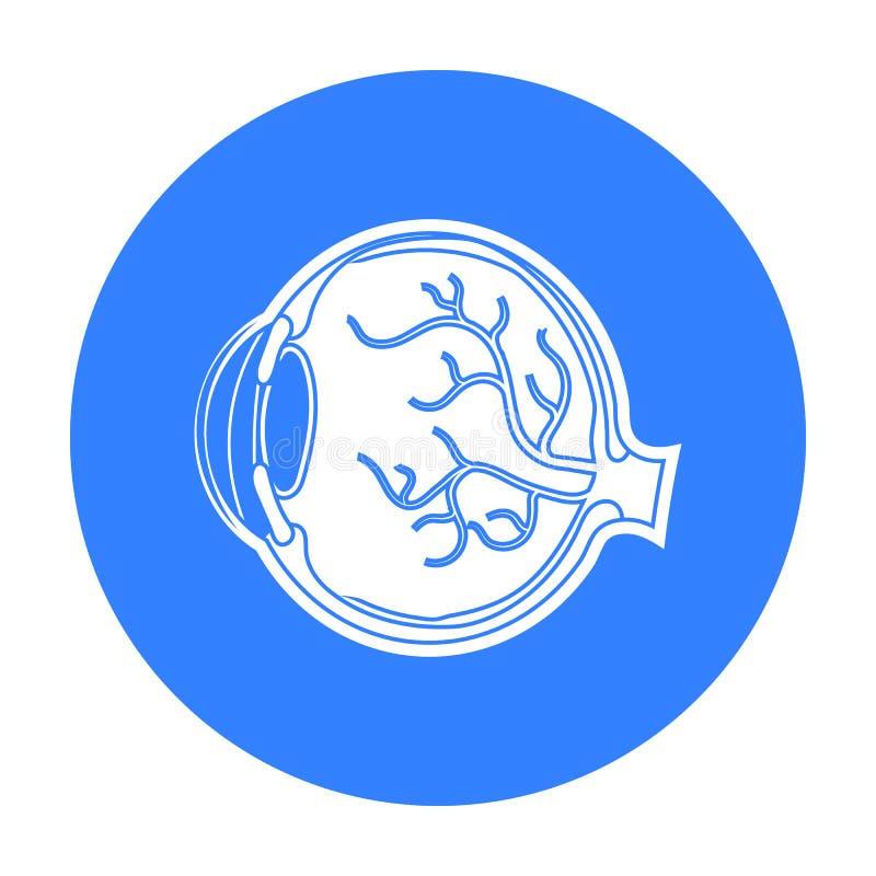 Oogappelpictogram in zwarte die stijl op witte achtergrond wordt geïsoleerd De voorraad vectorillustratie van het organensymbool royalty-vrije illustratie