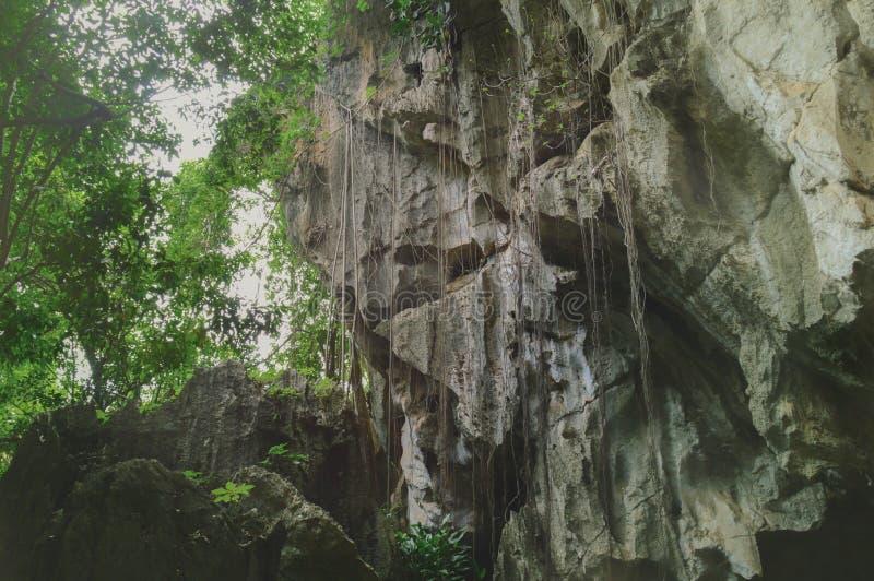 Oogst het Nationale Park van Phnomkulen in Siem Kambodja royalty-vrije stock foto
