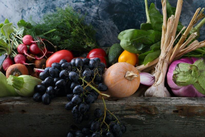 Oogst van groenten royalty-vrije stock fotografie