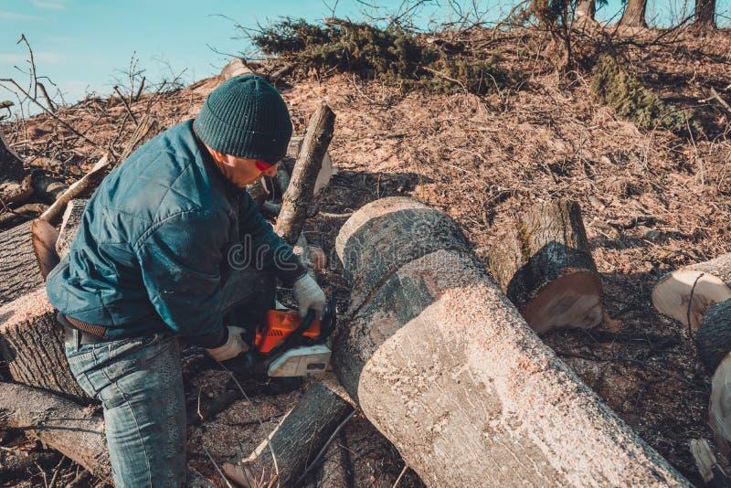 Oogstend brandhout voor de winter, sneed een mens in glazen een boom door kettingzaagholding het in zijn handen royalty-vrije stock afbeelding