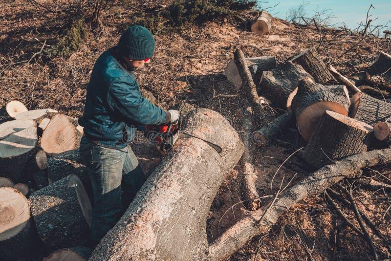 Oogstend brandhout voor de winter, sneed een mens in glazen een boom door kettingzaagholding het in zijn handen stock afbeeldingen