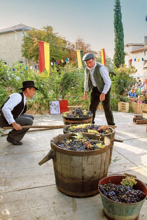 Oogstende druiven: festival van de druivenoogst in chusclan vil stock foto's