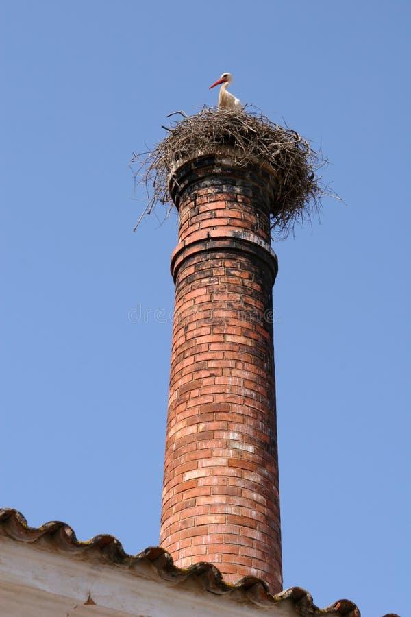 Ooievaar op het nest van de schoorsteenstapel stock foto