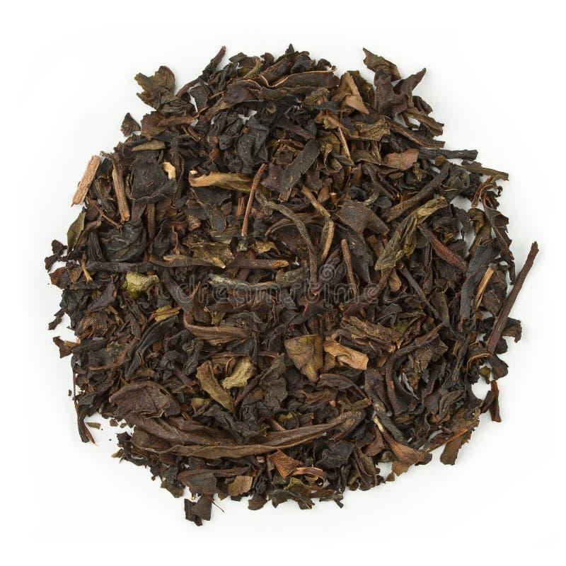Oolong tea Formosa royalty free stock image