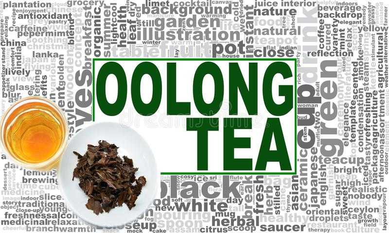 Oolong tea word cloud. Creative illustration of idea word lettering typography . 3D rendering royalty free stock images