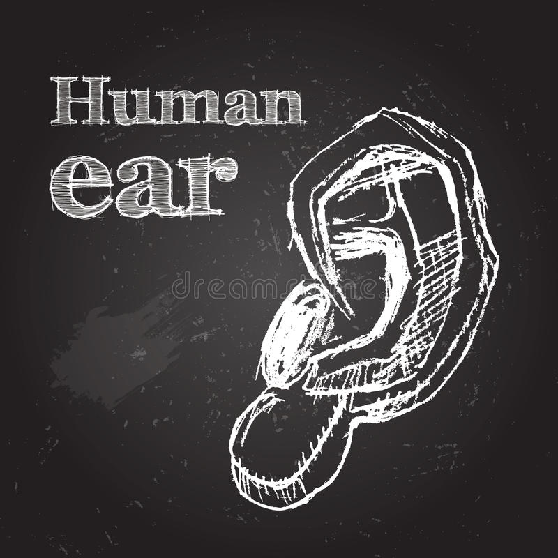 oor royalty-vrije illustratie