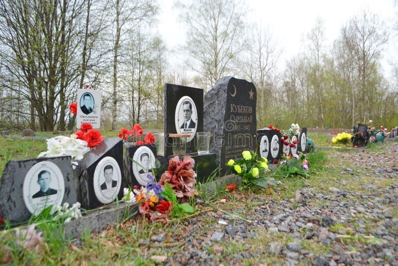Oorlogsgedenkteken op Sinyavino-Hoogten royalty-vrije stock fotografie