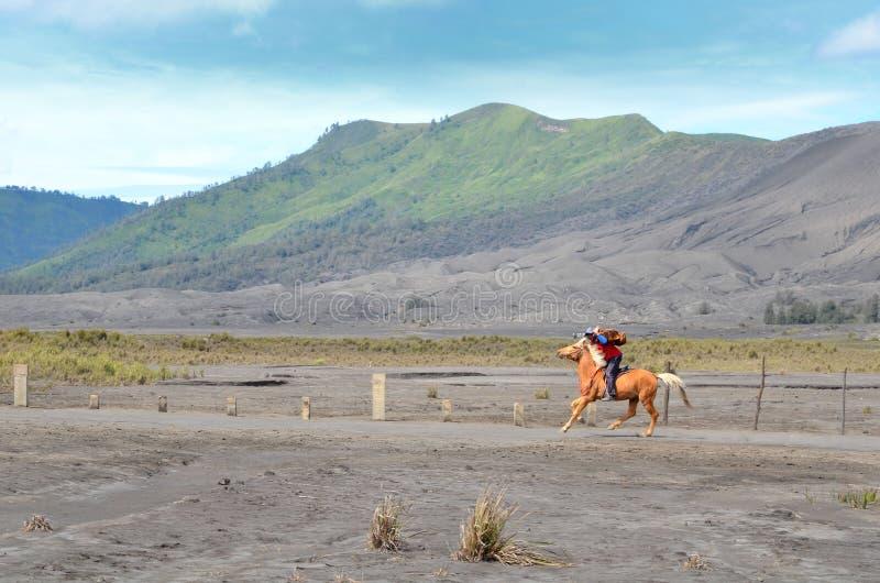 Oost-Java, Indonesië - Mei 12, 2016: Niet geïdentificeerde paardruiters voor huur om Bromo in Oost-Java op te zetten, royalty-vrije stock afbeeldingen