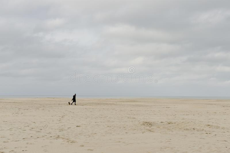 Oostduinkerke, Belgien - 16 november 2019: En kvinna går sin hund på stranden på en kall november dag fotografering för bildbyråer