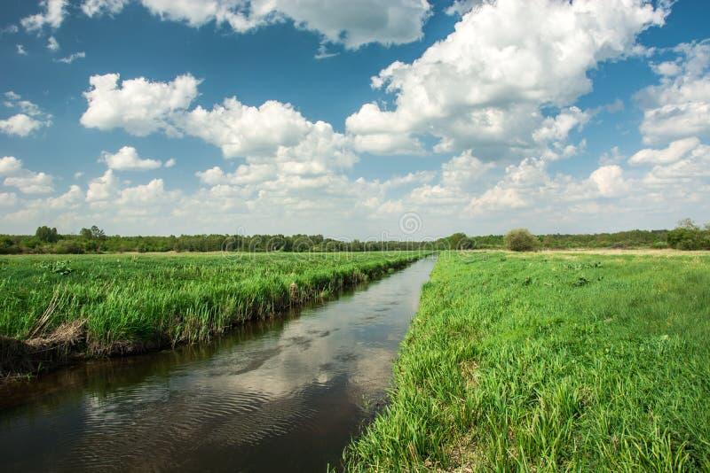 Oostelijk Polen en de rivier die door groene weide, bos aan de horizon vloeien en witte wolken op hemel stock foto's