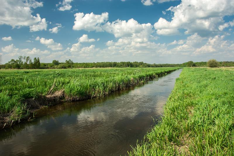 Oostelijk Polen en de rivier die door groene weide, bos en witte wolken op hemel vloeien royalty-vrije stock foto's