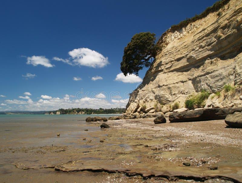 Oostelijk strand stock foto