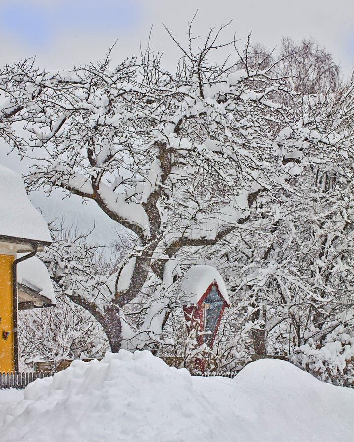 Oostenrijk, kleine rode die kapel en boom door sneeuw wordt behandeld royalty-vrije stock afbeelding