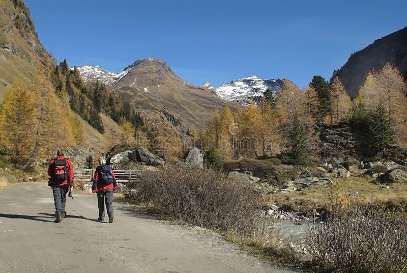 Oostenrijk, Osttirol, trekking stock foto's