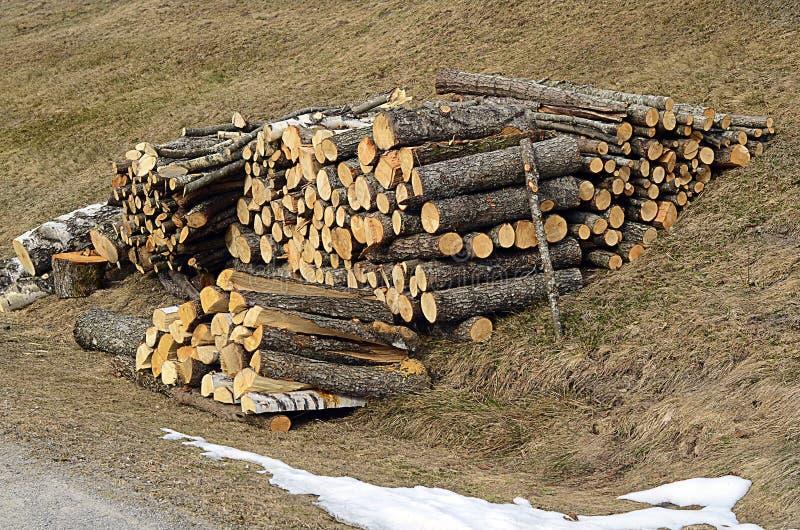 Oostenrijk, Tirol, hout royalty-vrije stock afbeelding