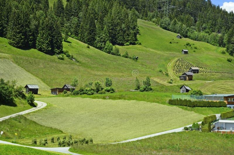 Oostenrijk, Tirol, plattelandsgebied stock foto