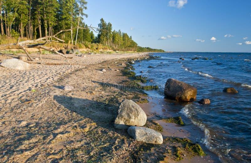 Oostzee bij avond stock foto's