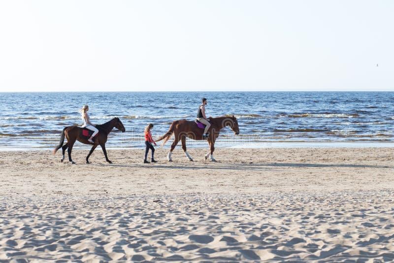 Oostzee en volkeren die met paarden lopen royalty-vrije stock foto's