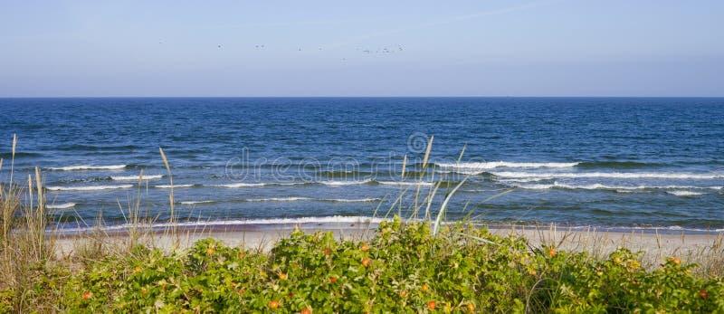 Oostzee, Litouwen royalty-vrije stock fotografie