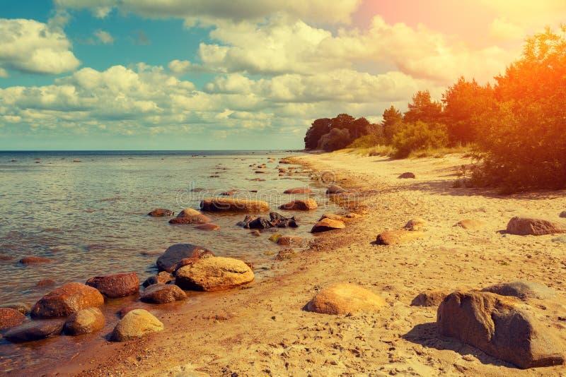 Oostzeekust royalty-vrije stock foto